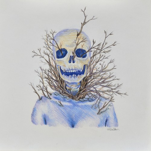 Skelet, 2013, colored pencil on paper, 10in x 10in, photo by Andrew McAllister